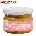 緑黄色野菜の炊き込みごはん(100g)【イチオシ】【有機まるごとベビーフード】