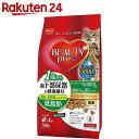 ビューティープロ 猫下部尿路の健康維持 低脂肪 1歳から フィッシュ味 560g(140g×4袋)【楽天24】[BEAUTY pro(ビューティプロ) キャットフード(尿石形成予防)]
