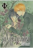 SILVER DIAMOND / 14
