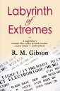 Labyrinth of Extremes: The CAM Gordon Chronicles【電子書籍】[ R. M. Gibson ]