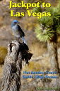 Jackpot to Las Vegas: Not Another Travel Guide Hig