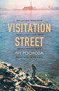 Visitation StreetTwo girls disappear on the river. Only one of them comes back【電子書籍】[ Ivy Pochoda ]