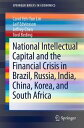 National Intellectual Capital and the Financial Crisis in Brazil, Russia, India, China, Korea, and South Africa【電子書籍】 Carol Yeh-Yun Lin