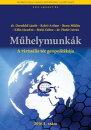A virtu���lis t���r geopolitik���ja - Geopolitics of the Virtual Space