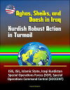 Aghas, Sheiks, and Daesh in Iraq: Kurdish Robust A