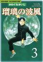瑠璃の波風(3)【電子書籍】[ かわぐちかいじ ]