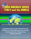 How America Saved Italy and the World: Using Bretton Woods and the Marshall Plan after World War II to Bring Stability and Peace to Europe through Instruments of National Power, Blocking Communism【電子書籍】 Progressive Management
