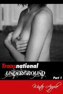 Transnational Underground Part 1
