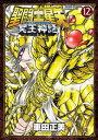 聖闘士星矢 NEXT DIMENSION 冥王神話 12【電...