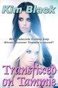Transfixed on TammieA Lakeside Holiday Revelation【電子書籍】[ Kim Black ]