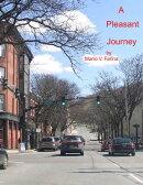 A Pleasant Journey