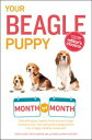 Your Beagle Puppy Month by MonthEverything You Need to Know at Each State to Ensure Your Cute and Playful Puppy Grows into a Happy, Healthy Companion【電子書籍】[ Terry Albert ]