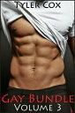Gay Bundle - Volume 3 (Gay Taboo MM Erotic Romance)【電子書籍】[ Tyler Cox ]