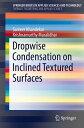 Dropwise Condensation on Inclined Textured Surfaces【電子書籍】[ Sameer Khandekar ]