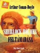 Sherlock Holmes felt���mad���sa