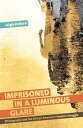Imprisoned in a Luminous GlarePhotography and the African American Fre...