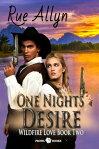 One Night's Desire[ Rue Allyn ]