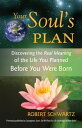 Your Soul 039 s PlanDiscovering the Real Meaning of the Life You Planned Before You Were Born【電子書籍】 Robert Schwartz