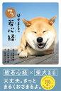 柴犬まるのワン若心経【電子書籍】[ 加藤朝胤 ]