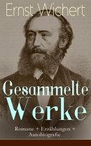Gesammelte Werke: Romane + Erz���hlungen + Autobiografie (Vollst���ndige Ausgaben)