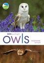 RSPB Spotlight Owls【電子書籍】[ Ms Marianne Taylor ]