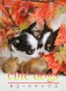 cute dogs14 チワワ【電子書籍】