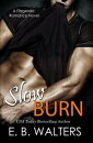 Slow Burn (Book 1 of the Fitzgerald Family)
