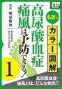 名医がカラー図解! 高尿酸血症・痛風は予防できる! (1) 高尿酸血症・痛風とは、どんな病気?【電子