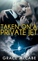 Taken On A Private Jet - The Naughty Billionaire #2 (BDSM Erotic Romance)