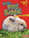 Meet a Baby Rabbit【電子書籍】[ Jennifer Boothroyd ]