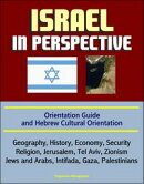 Israel in Perspective: Orientation Guide and Hebrew Cultural Orientation: Geography, History, Economy, Secur��