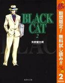 BLACK CAT�ڴ�ָ���̵���� 2