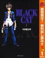 BLACK CAT�ڴ�ָ���̵���� 1