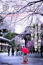 Tokyo Cherry Blossom 東京の桜 ?新宿 中央公園・熊野神社(十二社)?【電子書籍