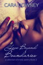Love Beyond Boundaries a collection of erotic poetry book 3