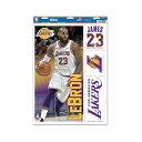 NBA ロサンゼルス・レイカーズ レブロン・ジェームッズ マルチデコールステッカー / Los Angels Lakers Lebron James