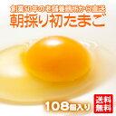 【たまご 卵 玉子 】 朝採り 初 たまご 108個 (破損...