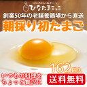 【送料無料】 朝採り 初 たまご 162...