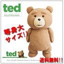 送料無料【 等身大 TED テッド 特大 ぬいぐるみ 53cm 】テッドグッズ テディベア インチ