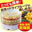 [特別ご招待]ドライフルーツメーカー 送料無料 乾燥フルーツ ドライフルーツ製造機 果物 野菜 乾燥機