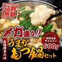 メガ盛もつ600g 博多もつ鍋セット(3〜4人分/お野菜なし)【 もつ4・スープ・麺・薬味2 】