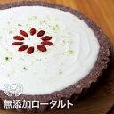 【送料無料】Vivoローチーズタルト ギフト ロースイーツ グルテンフリー 低GI 乳製品・卵・小麦・砂糖不使用 無添加 ヴィーガン 冷凍便