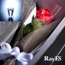 [フラワー付ギフト] RayES/レイエス ダブルウォールグラス RDS-002 300ml バラ・プリザーブドフラワー付[1個入り・ラッピング・カード] 【あ...