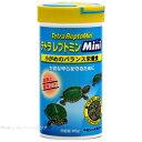 テトラ レプトミン ミニ 85g (消費期限2020/05)【在庫有り】-