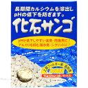 ソネケミファ 化石サンゴ 1kg(500gネット入×2) 【在庫あり】-