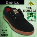 Emerica_fig_bg_01