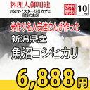 【あす楽対応☆29年産】 新潟県産 魚沼 米作り名人 安達正春さんが作ったお米 コシヒカリ 5kg×