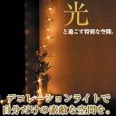 今年のクリスマスは幻想的なライトでお洒落にディスプレイ。ルミエール プルーム ZA-7914B【...