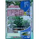 2-19あかぎ園芸観葉植物の土5L10袋(代引き不可)【ポイント10倍】【RCP】【10P26Apr14】