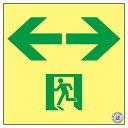 高輝度蓄光通路誘導標識 ←→ ASN953【代引不可】【ポイント10倍】